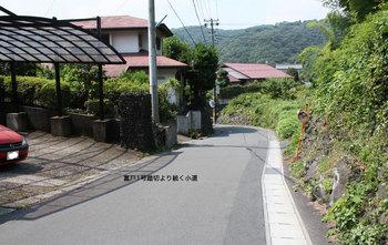 syuzai6.jpg